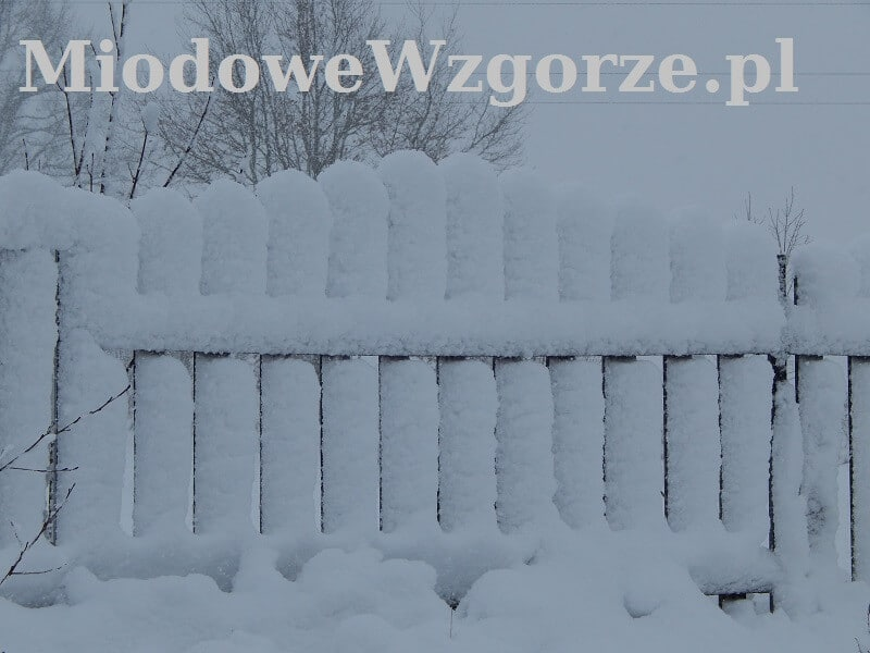 obfite opady śniegu w grudniu