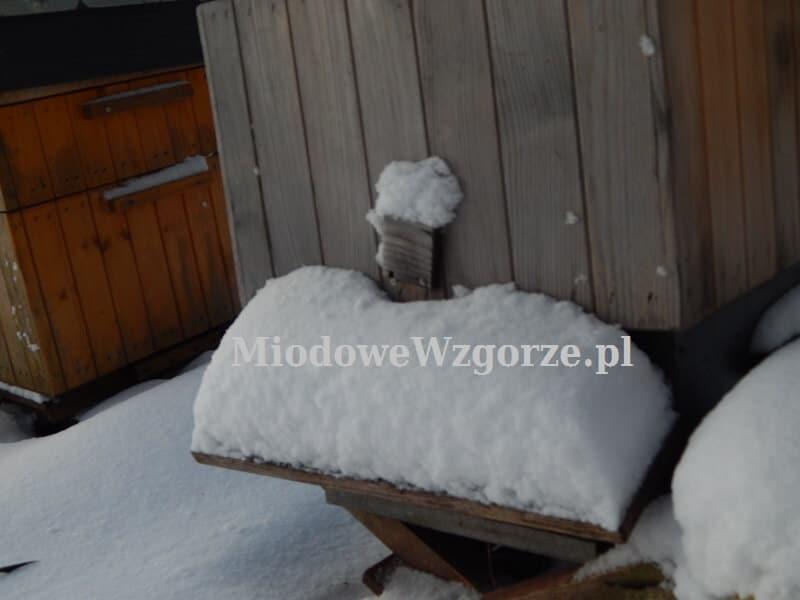 Wylotek w ulu zasypane śniegiem